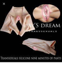 The poor translation on this product: S DREAM  RAN S S E X U A L S  TRANSSEXUALS SILICONE NINE MINUTES OF PANTS The poor translation on this product