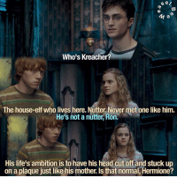 Dumbledore, Elf, and Gryffindor: S e/  a  Who's Kreacher?  The house-elf who lives here. Nutter Never met one like him.  He's not a nutter Ron.  His life's ambition is to have his head cut off and stuck up  on a plaque just like his mother, Is that normal, Hermione? NEW HARRY POTTER EDIT! - - Although I would argue that it is pretty much impossible to define normal due to the differences in personality between every single person so finding common characteristics would not be possible, I would say that wanting to behead yourself is certainly not normal and does indicate that Kreacher should probably talk to someone about those urges. Maybe House-Elves can see a counsellor. Actually, considering their limited rights, S.P.E.W would probably have to fight for elf counsellors. Go on, Hermione, get cracking. I'm really glad that Kreacher turns out to help and leads the house elves into the battle of Hogwarts. Really shows what a little kindness and understanding can do to a person. - - QOTD: Do you think you're normal? AOTD: Absolutely not. - - harrypotter hogwarts jkrowling potterhead gryffindor hufflepuff ravenclaw slytherin philosophersstone sorcerersstone chamberofsecrets prisonerofazkaban gobletoffire orderofthephoenix halfbloodprince deathlyhallows dumbledore albusdumbledore harrypotteredit hpedit