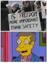 Memes, Freedom, and 🤖: S FREEDOM  MORE IMPORTANT  THAN SAFETY  YES