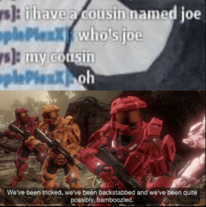 The ultimate fakeout by notkhaos MORE MEMES: s]: ilhave a cousin named joe  oplePlen  ys): my cousin  oplePlenKoh  wholsjoe  We've been tricked, we've been backstabbed and we've been quite  possibly, bamboozled. The ultimate fakeout by notkhaos MORE MEMES