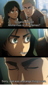memes sorry: s it pronounced  Anime-mes or Ani-memes?  Sorry, that was a strange thing to ask