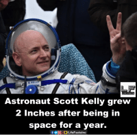 astronaut: S. KELLY  LIFE FACTS  Astronaut Scott Kelly grew  2 inches after being in  space for a year.