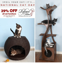 Memes, Furniture, and Today: S P O I L Y O U R CA T IT' S  NATIONAL CAT D  OFF  THE  all cat furniture  Chliae.  with code: FULLYCAT16  The RefinedFeline.com  expires 11/15/16 Today Is National Cat Day! Spoil your favorite felines with luxurious cat furniture from TheRefinedFeline.com. Now 29% OFF with coupon FULLYCAT16. Expires 11/15/16 #ad
