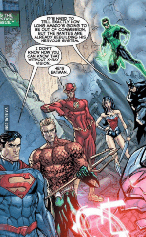 """Batman, The Flash, and How: S THE  STICE  GUE.""""  T'S HARD TO  TELL EXACTLY HOW  LONG AMAZO'S GOING TO  BE OUT OF COMMSSION,  BUT THE NANITES ARE  ALREADY REBUILDING HIS  NERVOUS SYSTEM.  I DONT  KNOW HOW YOu  CAN KNOW THAT  WITHOUT X-RAY  MSION.  HE'S  BATMAN. The Flash isnt wrong"""