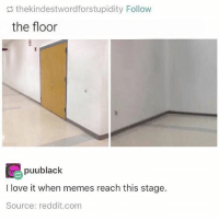 Such a beautiful stage of the meme life cycle: s thekindestwordforstupidity Follow  the floor  puublack  ct  I love it when memes reach this stage.  Source: reddit.com Such a beautiful stage of the meme life cycle