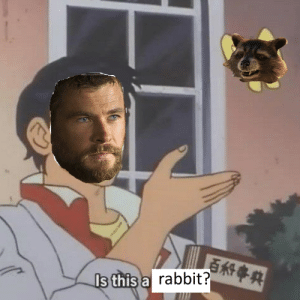 Tumblr, Avengers, and Blog: s this a  rabbit? baelor:  coffeandspacerocks: Avengers: Infinity War (2018) thor wasn't asking