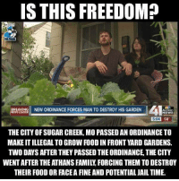 Family, Food, and Jail: S THIS FREEDOM?  BREAKING NEW ORDINANCE FORCES MAN TO DESTROY HIS GARDEN  Action  NEWS  NEWS LEADER  5:04  58  THE CITY OF SUGAR CREEK, MO PASSED AN ORDINANCE TO  MAKE IT ILLEGAL TO GROW FOOD IN FRONT YARD GARDENS.  TWO DAYS AFTER THEY PASSED THE ORDINANCE, THE CITY  WENT AFTER THE ATHANS FAMILY, FORCING THEM TO DESTROY  THEIR FOOD OR FACE A FINE AND POTENTIAL JAIL TIME. Smh