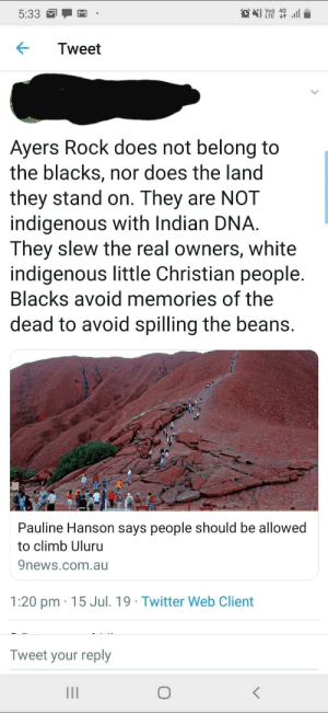 """""""I reject your reality and substitute it with my own!"""": S Vo) 4G  LTE t  ll  5:33  Tweet  Ayers Rock does not belong to  the blacks, nor does the land  they stand on. They are NOT  indigenous with Indian DNA  They slew the real owners, white  indigenous little Christian people.  Blacks avoid memories of the  dead to avoid spilling the beans.  Pauline Hanson says people should be allowed  to climb Uluru  9news.com.au  1:20 pm 15 Jul. 19 Twitter Web Client  Tweet your reply  II """"I reject your reality and substitute it with my own!"""""""