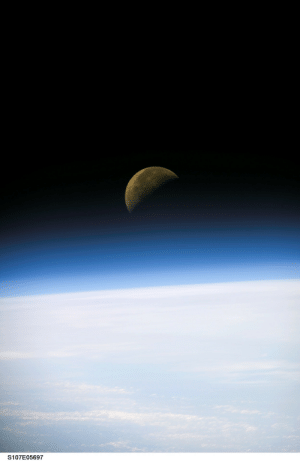 Tumblr, Blog, and Moon: S107E05697 photos-of-space:  Moon on the Horizon photographed during STS-107 [2008 x 3088]