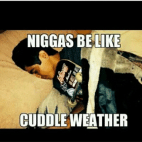I always cuddle with my @environmentskateboards x)-skatermemes: NIGGAS BE LIKE  CUDDLE WEATHER I always cuddle with my @environmentskateboards x)-skatermemes