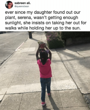 Ali, Dank, and World: sabreen ali.  @queenxbean  ever since my daughter found out our  plant, serena, wasn't getting enough  sunlight, she insists on taking her out for  walks while holding her up to the sun. Too pure for this world  By queenxbean | TW