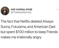 Or wizards of waverly like cmon u fat fucks, I'm switching to Hulu: sad cowboy emoji  @TheNewEternity  The fact that Netflix deleted Always  Sunny, Futurama, and American Dad  but spent $100 million to keep Friends  makes me irrationally angry Or wizards of waverly like cmon u fat fucks, I'm switching to Hulu