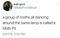 Dancing, Girl, and Sad: sad girl  @BabeFromBrazil  a group of moths all dancing  around the same lamp is called a  Moth Pit  9/27/18, 3:03 PM