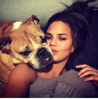 "Sad news - Chrissy Teigen's adored bulldog - who'd been with her and her family since the first year she began dating John Legend - ""has gone on to the pup heavens."" RIP good boy. tmz: Sad news - Chrissy Teigen's adored bulldog - who'd been with her and her family since the first year she began dating John Legend - ""has gone on to the pup heavens."" RIP good boy. tmz"