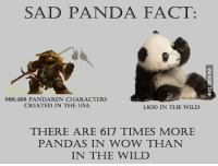 Panda: SAD PANDA FACT:  988,488 PANDAREN CHARACTERS  CREATED IN THE USA  1,600 IN THE WILD  THERE ARE 617 TIMES MORE  PANDAS IN WOW THAN  IN THE WILD