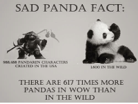 Facts, Memes, and Wow: SAD PANDA FACT:  988,488 PANDAREN CHARACTERS  CREATED IN THE USA  1,600 IN THE WILD  THERE ARE 617 TIMES MORE  PANDAS IN WOW THAN  IN THE WILD There's approximately 1864 Panda's in the wild, but you only think of yourselves!!! D: - Sarabear