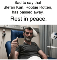 Sad, Peace, and Irl: Sad to say that  Stefan Karl, Robbie Rotten,  has passed awaV  Rest in peace me_irl