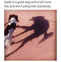 Memes, 🤖, and Full Moon: Sadie is a great dog until a full moon  hits and she fucking kills everybody  Shitheadsteve She's always had two sides (Rp @shitheadsteve_)