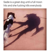Moon, Dog, and Full Moon: Sadie is a great dog until a full moon  hits and she fucking kills everybody  Shitheadsteve zzzz