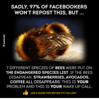 #Anonymous: SADLY, 97% OF FACEBOOKERS  WON'T REPOST THIS, BUT  7 DIFFERENT SPECIES OF BEES WERE PUT ON  THE ENDANGERED SPECIES LIST. IF THE BEES  DISAPPEAR, STRAWBERRIES, AVOCADOS  COFFEE ALL DISAPPEARS. THIS IS YOUR  PROBLEM AND THIS IS YOUR WAKE UP CALL.  LIKE & SHARE THIS BEFORE IT'S TOO LATE! #Anonymous