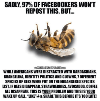 "Identity Politics: SADLY, 97% OFFACEBOOKERS WON'T  REPOST THIS, BUT  FREETHOUGHT PROJECT  WHILE AMERICANSWEREDISTRACTED WITH KARDASHIANS,  BRANGELINA, IDENTITY POLITICS AND CLOWNS, 7DIFFERENT  SPECIES OF BEESWERE PUT ON THE ENDANGERED SPECIES  LIST IF BEES DISAPPEAR, STRAWBERRIES, AVOCADOS, COFFEE  ALLDISAPPEAR. THIS IS YOUR PROBLEMAND THIS IS YOUR  WAKE UP CALL. ""LIKE""I4& SHARE THIS BEFOREITS TOOLATE!"