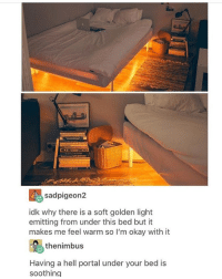 Memes, Okay, and Portal: sadpigeon2  idk why there is a soft golden light  emitting from under this bed but it  makes me feel warm so I'm okay with it  thenimbus  Having a hell portal under your bed is  soothing 🤣lol