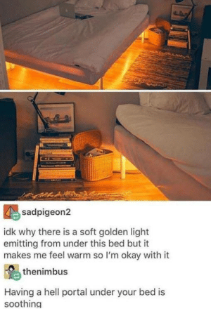 Cool, Okay, and Portal: sadpigeon2  idk why there is a soft golden light  emitting from under this bed but it  makes me feel warm so I'm okay with it  thenimbus  Having a hell portal under your bed is  soothing Cool though