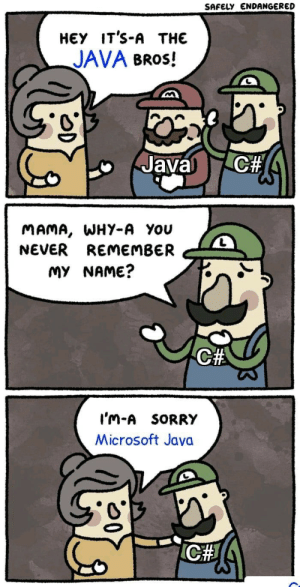 Microsoft Java: SAFELY ENDANGERED  НЕУ IT'S-A THE  JAVA BROS!  C#  Javal  MAMA, WHY-A You  NEVER REMEMBER  MY NAME?  C#  I'm-A SORRY  Microsoft Java  ICH Microsoft Java