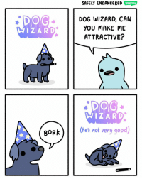 Memes, Good, and 🤖: SAFELY ENDANGERED  DOG WIZARD, CAN  YOU MAKE ME  ATTRACTIVE?  WIZARD  庶  DOG  WIZARD  (hes not very good)  BORk hi doggy