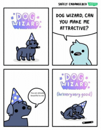 SAFELY ENDANGERED  DOG  WIZARD  DOG WIZARD, CAN  YOU MAKE ME  ATTRACTIVE?  WIZARD  ot t(hesvery very good)  You are already source: Safely Endangered