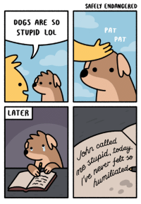 Dogs, Lol, and Memes: SAFELY ENDANGERED  DOGS ARE SO  STUPID LOL  PAT  PAT  LATER  stupid, today  never fet  (ve  ohn calle dog comix