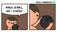 balling: SAFELY ENDANGERED  WEB  TOON  MAGIC 8-BALL,  Am I STUPID?