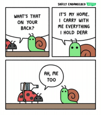 """Memes, Home, and Back: SAFELY ENDANGERED WEBTOON  WHAT'S THAT  ON YOUR  BACK?  IT'S MY HOME.  I CARRY WITH  ME EVERYTHING  I HOLD DEAR  AH, ME  TOO """"Ladyglug"""" - @chrishallbeck 😄"""