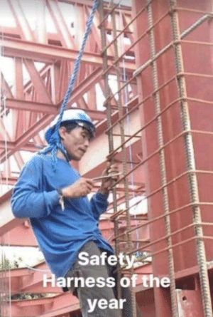 Safety: Safety  Harness of the  year Safety