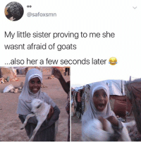 That look is priceless: @safoxsmn  My little sister proving to me she  wasnt afraid of goats  .also her a few seconds later That look is priceless