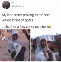 😂Wth: @safoxsmn  My little sister proving to me she  wasnt afraid of goats  also her a few seconds later 😂Wth