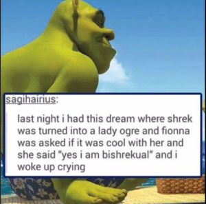 "Crying, Shit, and Shrek: sagihairius:  last night i had this dream where shrek  was turned into a lady ogre and fionna  was asked if it was cool with her and  she said ""yes i am bishrekual"" and i  woke up crying Oh shit, that's deep"