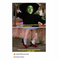 Lmao, Shoes, and Fuck: Said little witch,you can't fuck with me  If you wanted to  These expensive, these is red rubles, these  CLIPS  is magic shoes.  layered-like-an-onion  Brickroad Yellow lmao