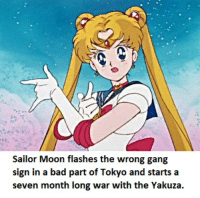 Sailor Moon-Moon: Sailor Moon flashes the wrong gang  sign in a bad part of Tokyo and starts a  seven month long war  with the Yakuza. Sailor Moon-Moon