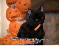 Salem, For, and Those: Salem, those are for the quests.