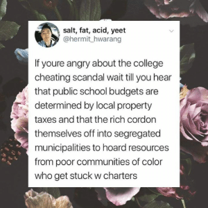 (W): salt, fat, acid, yeet  @hermit_hwarang  If youre angry about the college  cheating scandal wait till you hear  that public school budgets are  determined by local property  taxes and that the rich cordon  themselves off into segregated  municipalities to hoard resources  from poor communities of color  who get stuck w charters (W)
