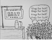 Does this remind you of a recent group of voters?: SALT  Slugs for Salt  slugs for salt!  vas for salt!  slugs for Shit! Does this remind you of a recent group of voters?