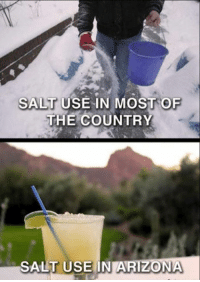 salt: SALT USE IN MOST OF  THE COUNTRY  SALT USE IN ARIZONA