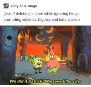 Being Salty, Blue, and Heroes: salty-blue-mage  @staff deleting all porn while ignoring blogs  promoting violence, bigotry, and hate speech  We did it Patrick!We saved the city Such Heroes.