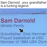 I just find this so funny! 😂🔨 SoBasicICantEven: Sam Darnold...your grandfather  is a fucking legend  Sam Darnold  Athletic Family  Grandfather Dick Hammer  Played basketball at USC  Member of 1964 USA Olym I just find this so funny! 😂🔨 SoBasicICantEven
