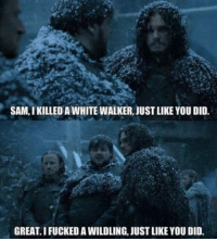 Memes, 🤖, and White Walkers: SAM, IKILLED A WHITE WALKER, JUSTLIKEYOU DID.  GREAT.I FUCKEDAWILDLING, JUST LIKE YOU DID. --Greyjoy