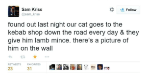 The Road, A Picture, and Cat: Sam Kriss  @sam_kriss  Follow  found out last night our cat goes to the  kebab shop down the road every day & they  give him lamb mince. there's a picture of  him on the wall  RETWEETS  FAVORITES  23  31