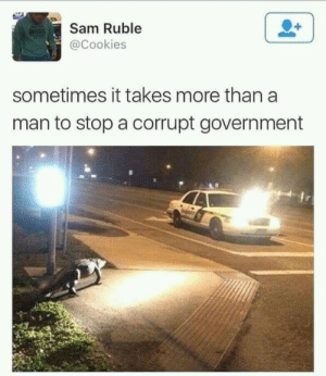 Cookies, Government, and Sam: Sam Ruble  @Cookies  sometimes it takes more than a  man to stop a corrupt government Sometimes it takes more
