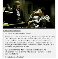 spn Supernatural spnfamily jaredpadalecki jensenackles mishacollins sam dean winchesters castiel destiel fandom ship otp: Sam s srors matches Dean s to the last detail.  the boy whorunswithwolves:  Can we just talk about this for a second?  Sam and Dean were arrested separately. Kept in completely isolated holding  cells. At this point, they haven't seen each other since before they were  amested, and have not discussed any sort of cover story. They have  never been in this situation before, or worked a case exactly like this one.  Basically, their stories should have been similar, but there should have been  small errors. Tiny differences in detail.  Nope. Sam and Dean's stories are so identical that even the  policewoman who is convinced that Dean is a murderer doesn't  know what to think.  How's that for synchronized? spn Supernatural spnfamily jaredpadalecki jensenackles mishacollins sam dean winchesters castiel destiel fandom ship otp