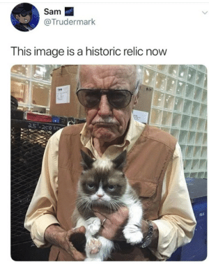 RIP grumpy cat. by 1999_yadwade MORE MEMES: Sam  @Trudermark  This image is a historic relic now  25'-250 RIP grumpy cat. by 1999_yadwade MORE MEMES